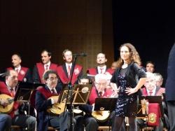 Concierto Pulso y Púa 2016_3