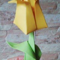 tulipanes_4