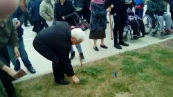 Mannequin Challenge y plantación de tulipanes_4